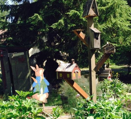 gardenbirdhouse
